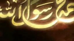 في ذكرى مولد الحبيب - أين المسلمون من قضاياهم