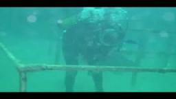 غواص يصلي في قاع البحر