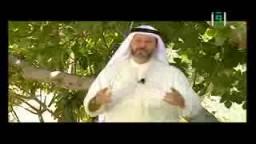 فن التأمل – د. جاسم المطوع-  شجرة التين