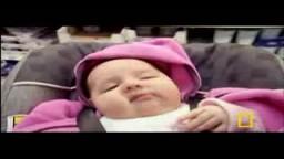 رحلة فى حواس الاطفال حديثى الولادة
