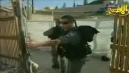 جريمة اقتحام الصهاينة المعتدين للمسجد الاقصى المبارك
