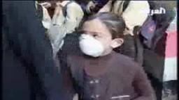 انفلونزا الخنازير في المدارس المصرية