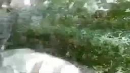 تهريب مساجين من مركز شرطة إيتاي البارود