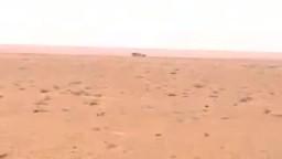 حشد لكتائب القذافى لضرب الزنتان ليبيا