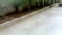 سوريا سيارات الشرطة بعد الحرق في اريحا ادلب 20-5
