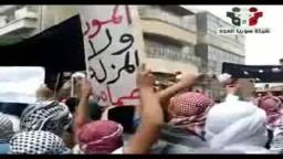 سوريا المجد مظاهرة حماة المناخ جمعة حماة الديار أهل حماة يحملون الورد لتقديمها للجيش