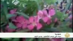 سوريا-- خمسة وثلاثون شهيدا في جسر الشغور