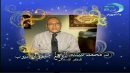 الدكتور محمد سليم العوا  وقناة مصر 25