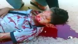 لن تصدق ما ستراه عيناك .. شبيحة بشار الأسد  يذبحون طفل سورى