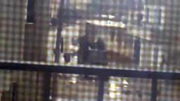 سوريا-- حوران - انتشار عصابات الاسد في انخل لارهاب الناس وتخويفهم 13/ 1/ 2012
