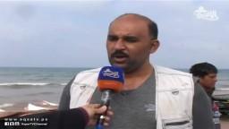 سمك الوطواط يغزو شواطئ غزة