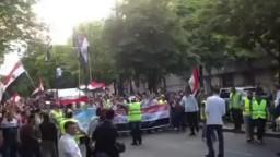 الجالية المصرية بفرنسا تأييداً للشرعية