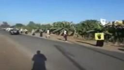 سلسلة بشرية ضد الانقلاب طريق طناح المنصورة