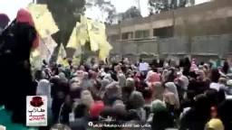 حشود حرائر الأزهر يشعلون الجامعة بالهتاف