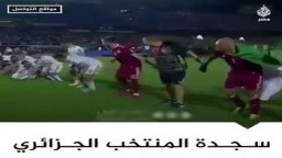 """""""منتخب الساجدين"""".. سجدة لاعبي الجزائر بعد الفوز بالبطولة الأفريقية"""