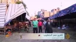 أسعار جنونية بأسواق الماشية.. الأضاحي أمنية يحول الغلاء بينها وبين الكثيرين