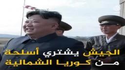 رغم العقوبات الدولية.. مصر حاولت إخفاء شراء أسلحة من كوريا الشمالية لكن الوثائق كشفتها