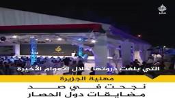 مهنية الجزيرة سلاحها لحملات النيل منها
