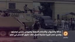 رد المنظمات الحقوقية على ادعاءات الوفد المصري بجنيف بشأن حقوق الإنسان