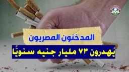 المدخنون المصريون يُهدرون 73 مليار جنيه سنويًا
