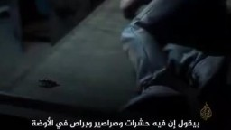 وباء داخل سجون مصر ومستشفياتها ومرضى داخلها في عداد الأموات