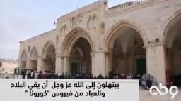 """المقدسيون بالمسجد الأقصى يبتهلون إلى الله عز وجل أن يقي البلاد والعباد من فيروس """"كورونا """""""