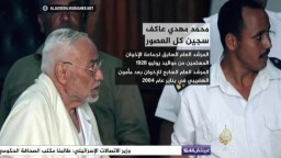 الشهيد أ/ محمد مهدي عاكف.. سجين كل العصور