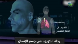 مسار فيروس كورونا داخل جسم الانسان.