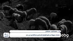 هل هناك فارق كبير بين حال الفلاح المصري الآن وحالة أيام نشأة جماعة الإخوان المسلمين؟