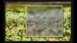 فيلم دعوي- حقيقة الحياة الدنيا- د. هارون يحيى --- ج5