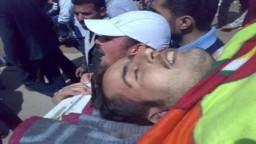 برومو عن الثورة السورية