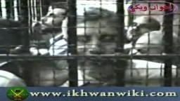 قرار المحكمة بالإفراج عن الإخوان في قضية سلسبيل عام 1992م .. من أرشيف الإخوان