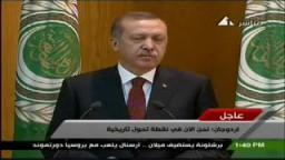 كلمة رئيس الوزراء التركى رجب طيب أردوغان أمام الجامعة العربية