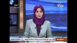 البرادعي يدعو إلى احتضان فلول مبارك