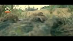 كتائب القسام للصهاينة - قناص غزة بانتظاركم