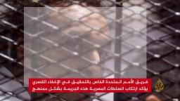 فريق الأمم المتحدة يوثق استمرار الجريمة في مصر